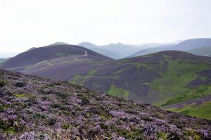 Pentland Hills – fioletowe wzgórza niedaleko Edynburga