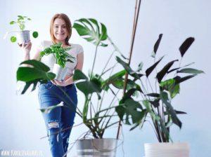 Pilea, kalatea i monstera, czyli proste rośliny do uprawy w domu