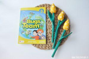 Pomysły na STORY CARDS do kursu Bugs Team