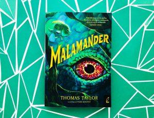 SHORTIE: Malamander